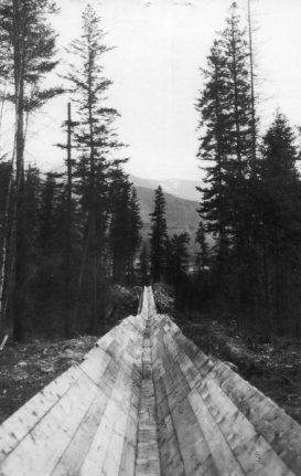 Logging Flume at Needles