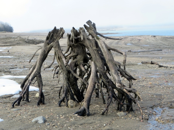 Driftwood Assembly