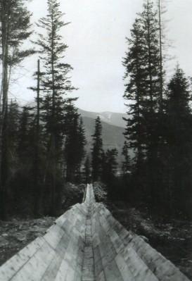 Log Flume Four Miles Long