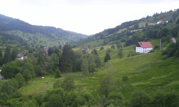 Vosges Mountains - Photo Credit: Wikipedia.org