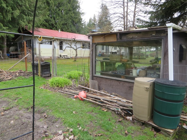 The Greenhouse I built for Biene from Scrap Materials