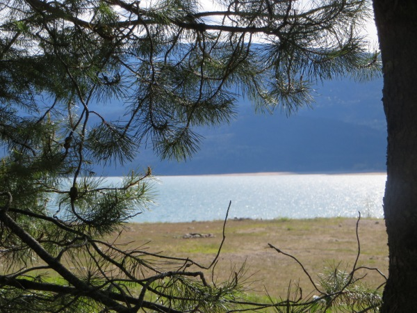 View onto the Lake at Taite Creek Campground