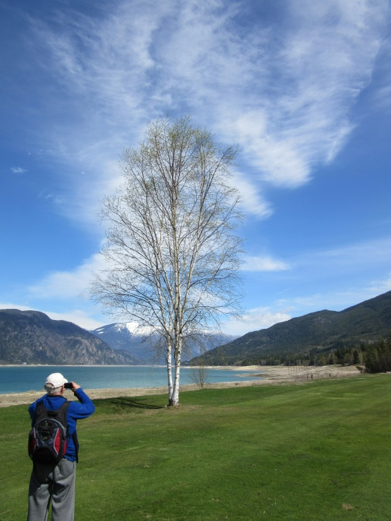 Peter Marveling at Birch Tree - Photo Credit - Biene Klopp