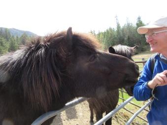 Peter Talkig to Horse - Photo Credit - Biene Klopp
