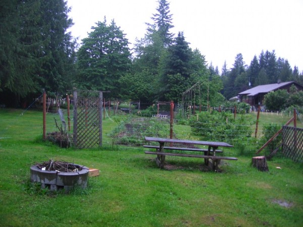 The very first Picture of our Garden taken by the Webcam last Night
