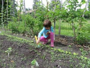 Young Gardener Azure