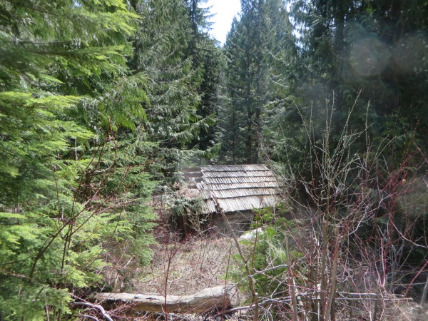 Cabin where Loggers once Slept away from Home