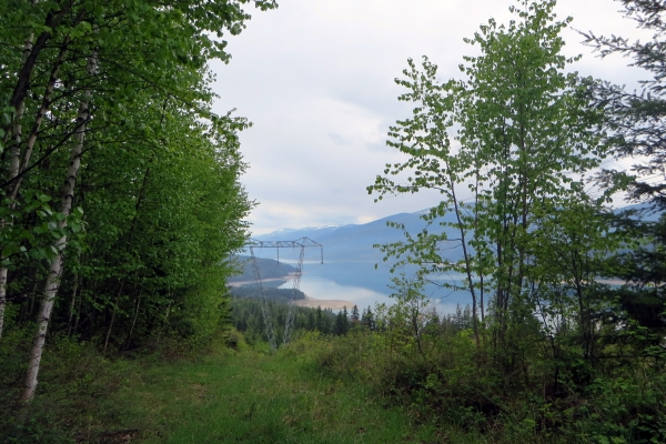 View from the Look-out onto the Arrow Lake