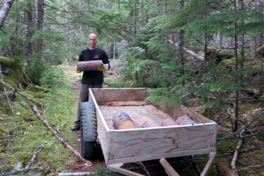 After Michael's truck was loaded with logs from a large pine tree, Michael cut down a larch for my small trailer.