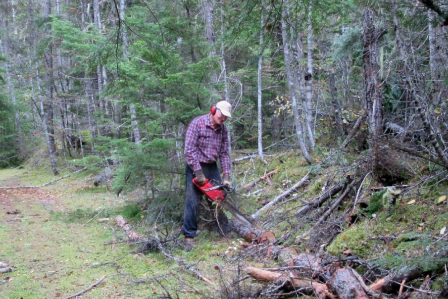 Still having to be careful with my right foot, I cut the fallen tree into small pieces, while Michael carried them to the trailer,
