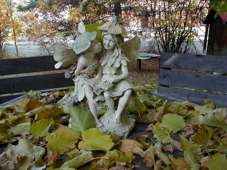 Keeping Watch over the Fallen Leaves