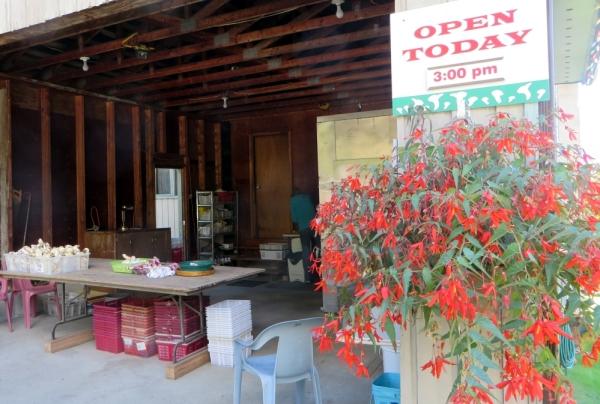 Dan and Jan's Buying Station in Nakusp