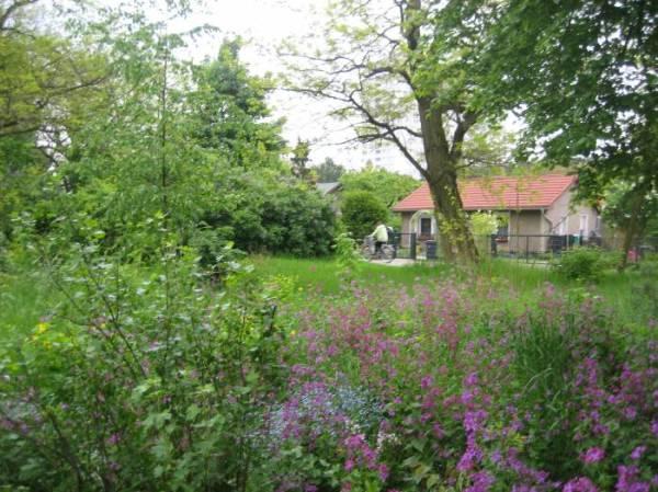 Garden Region near the Spree