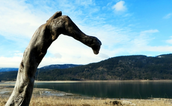Wooden sentinel keeping a watchful eye the Arrow Lake