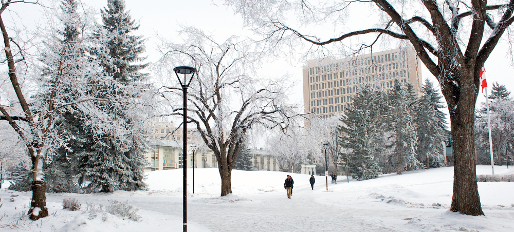 The University of Calgary campus in the winter of 2015.