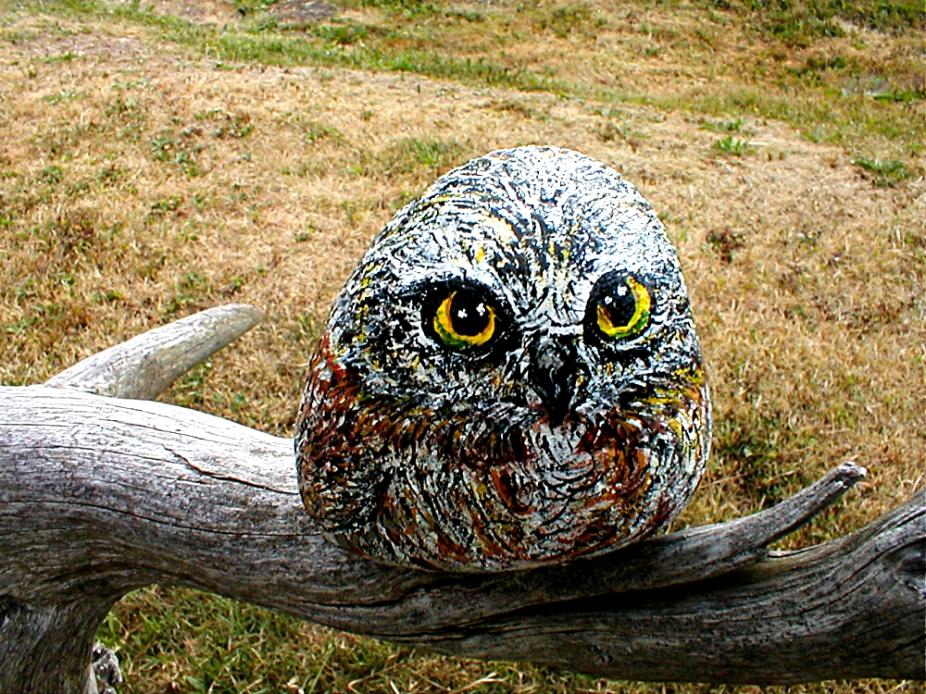 A-Owl4b