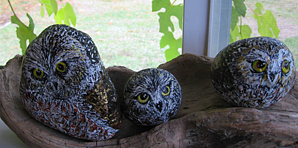 A-OwlsPorch